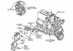 Vacuum Hose Routing Diagram Ford 5 4l Engine Html