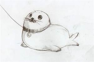 My pet Seal by maocha on DeviantArt