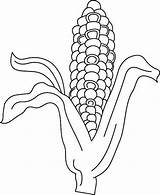 Corn Coloring Pages Indian Husk Template Print Button Using Vegetables Grab Could Well Easy sketch template