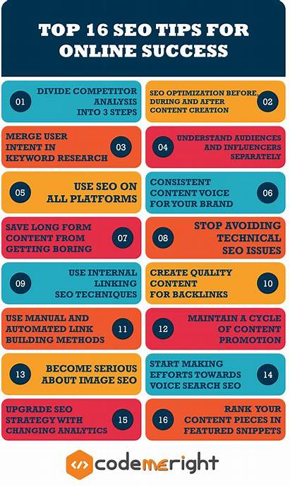 Seo Tips Infographic Steps Strategy Rank Improve