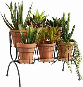 6, Pot, Plant, Stand