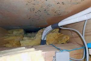 Decke Von Innen Dämmen : schimmel im dachboden die sachverst ndige zeigt wo es ~ Lizthompson.info Haus und Dekorationen
