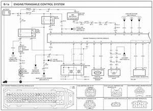 2003 Kia Rio Wiring Harness Diagram