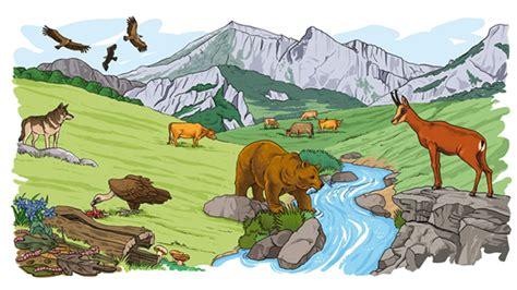 habitat si e social relación alimentaria entre los seres vivos relación