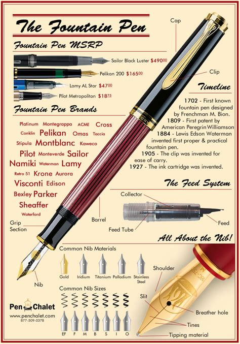 The Fountain Pen Infographic, A General View  Pen Chalet