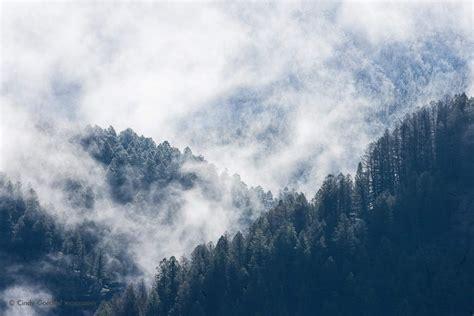 mist  fog cindy goeddel photography llc