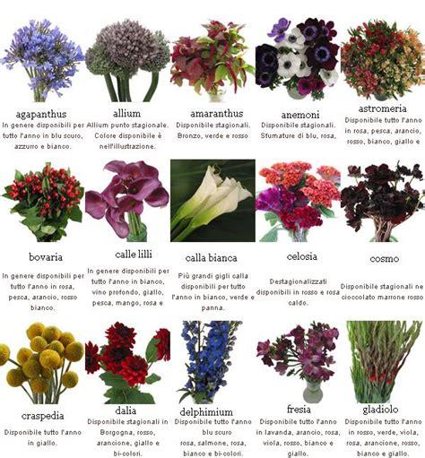 nomi di fiori l alfabeto dei fiori la lettera m nomi di fiori con la gli