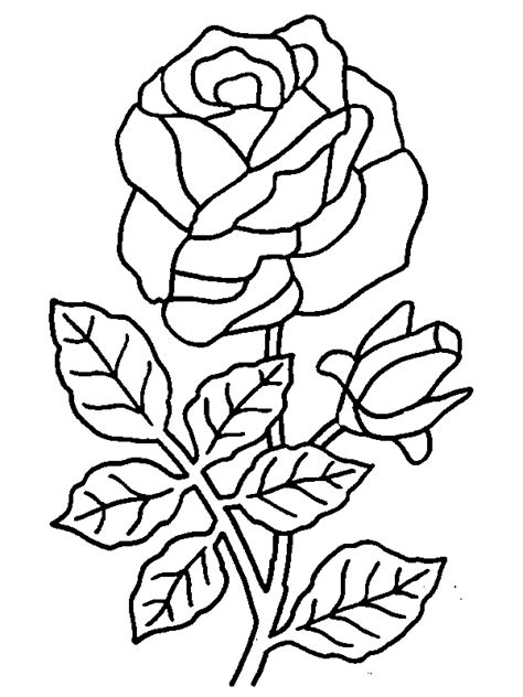 Coloring Roses by Coloring Pages Of Roses Coloring Pages To Print