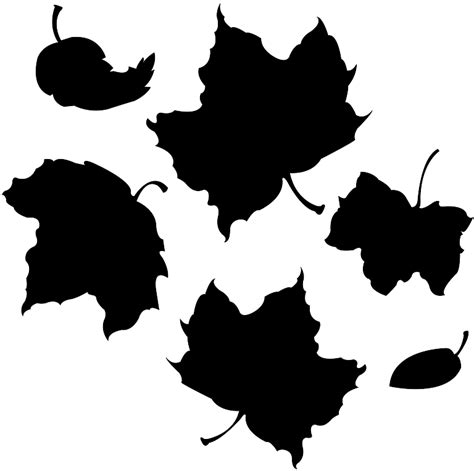 leaves silhouettes  outlines  vector images
