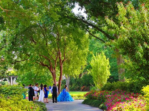 Dallas Garden by Dallas Arboretum And Botanical Garden Dallas Tx 75218
