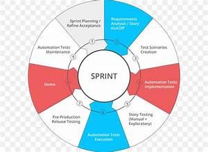 Software Quality Assurance Business Process Process Flow