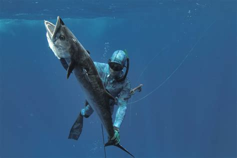 spearfishing mona passage rico puerto