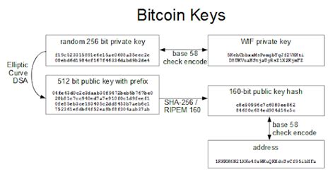 Visitors, search crawlers and our scanners harvest and store these keys into one database. btc_protocol - lbathen