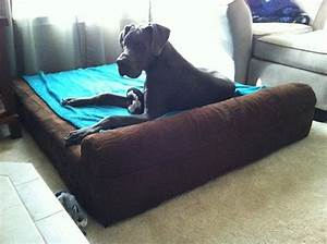 1000 images about dogs on big barker beds on pinterest With extreme dog beds