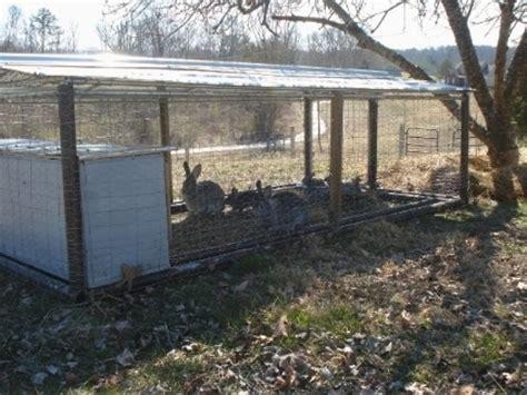 Gabbie Allevamento Conigli Allevamento Conigli Conigli Consigli Per Allevare Conigli