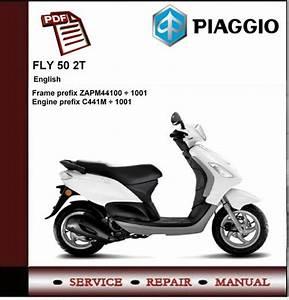 Piaggio Fly 50 2t Workshop Service Repair Manual