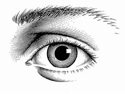 Eye Animated Pen Ink Animation Eyes Slightly