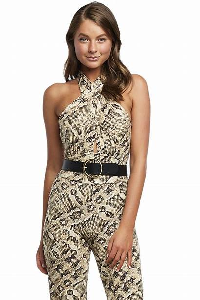 Snake Bodysuit Knit Clothing Tops Night Bardot
