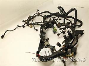 2006 Jeep Liberty Engine Wire Harness - 4801258ab