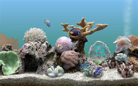living marine aquarium 2 screensaver artiron