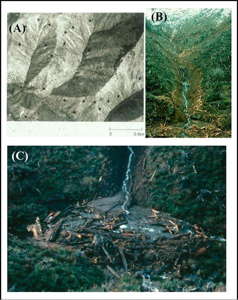 debris flow potential