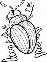Coloring Beetle Colorear Insect Escarabajos Potato Kleurplaat Dibujos Insects Tor Kever Aardappel Kolorowanka Owady Kolorowanki Insekten Stockillustratie Cartoon Owad Stonka sketch template