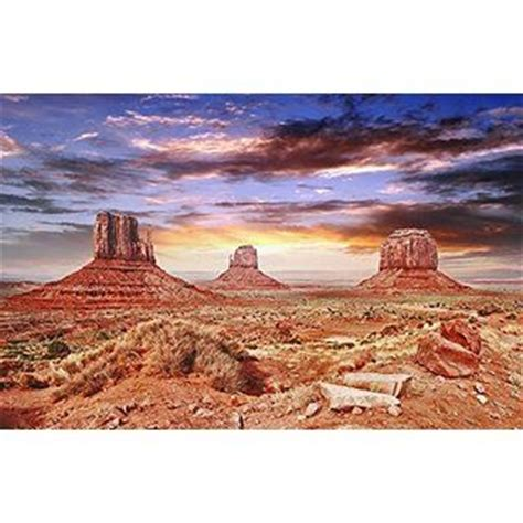 Desert Terrarium Background 17 Best Images About Snakes On Wright