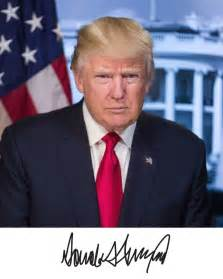 Donald Trump President Portrait