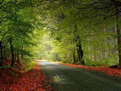 Nature Wallpapers Backgrounds Desktop Background Natural Beauty