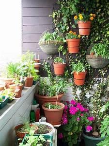 Herbes Aromatiques En Pot : plantes aromatiques au balcon comment cultiver les herbes ~ Premium-room.com Idées de Décoration
