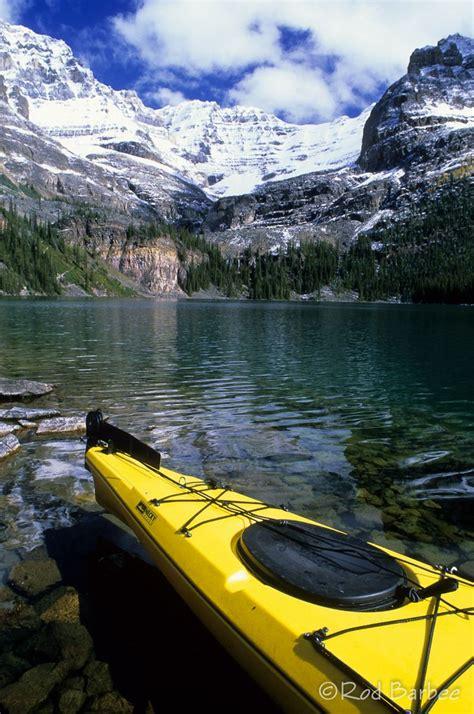 Peyto Lake In Banff National Park Alberta Canada