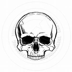 simple cute skull drawing - Google Search | Drawing to ...