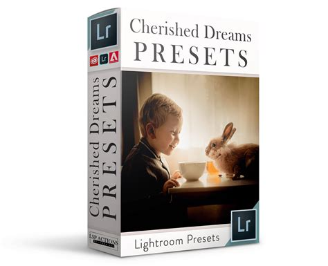 Restart lightroom and you're ready to edit with new presets. The Cherished Dreams Lightroom Presets for Lightroom ...