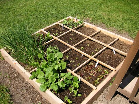 Square Foot Gardening by Square Foot Gardening That Bloomin Garden