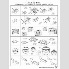 Sizes Worksheet Packet  Fran's Freebies