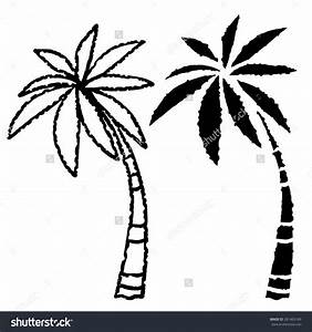 Palm Tree Line Drawing Coconut Palm Trees Line Black ...