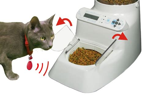 automatic cat feeder 8 smart pet feeders you should see slash pets