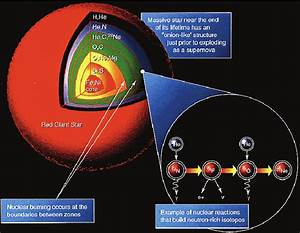 Cross Section Of A Red Giant Showing Nucleosynthesis And