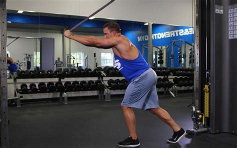 triceps exercises   video exercise guides