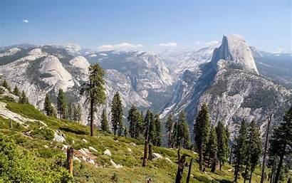 Nevada Sierra Trees Elevations Higher