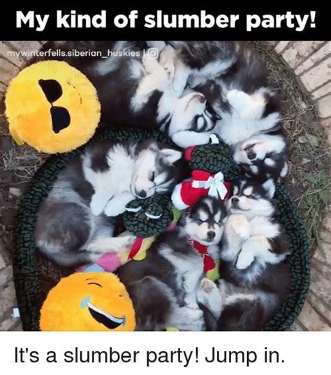 Slumber Party Meme - my kind of slumber party winterfells siberian huskies o it s a slumber party jump in meme on