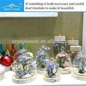 Glass Bell Jars Wholesale; Clear Dome&bottle Shape Wedding