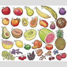 Fruit List With English Vocabulary Pdf  Learning English Vocabulary And Grammar  Basic English