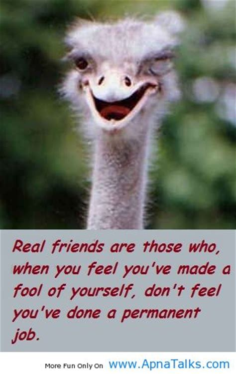 animal quotes pictures  animal quotes images