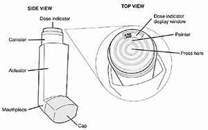 Diagram Of Parts Of An Inhaler