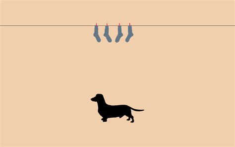 dachshund clothesline by Angeli — Simple Desktops