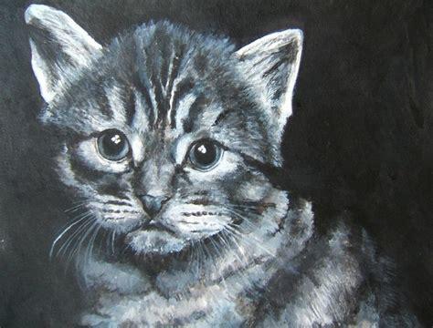 Cat Portrait Artist Best Pet Portraits Affordable Pet