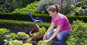 Salat Pflanzen Abstand : salat hat immer saison mein sch ner garten ~ Markanthonyermac.com Haus und Dekorationen