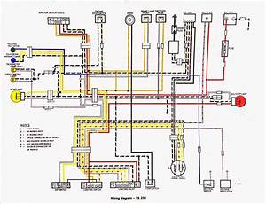 Suzuki Ts 250 Electrical Diagram  Suzuki  Free Engine