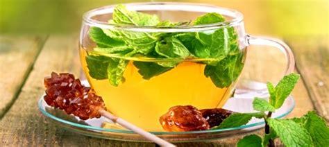 teesorten und ihre wirkung teesorten und ihre wirkung wirkung teesorten und ihre heilende wirkung teesorten und ihre